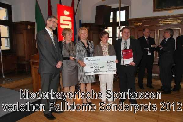 Gründerpreis 2012 für Pallidomo